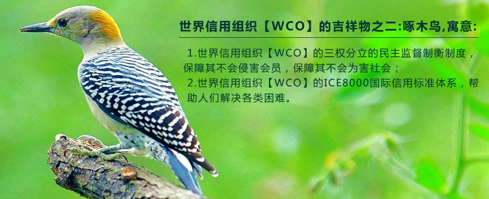 Honest mascot woodpecker